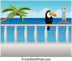 gépel, erkély, tenger