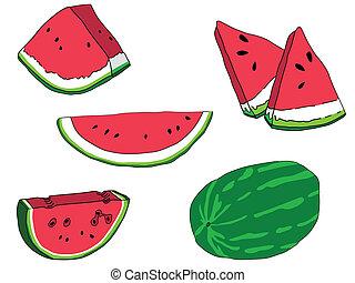 görögdinnye, állhatatos