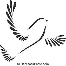 galamb, madár, vagy
