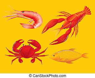 garnélarák, fish, tengeri rák, seafood:, folyami rák