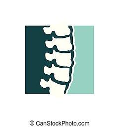 gerinc kezelése, fogalom, gerinc