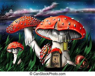 gombák, varázslatos
