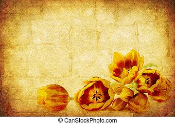 grunge, tulipánok