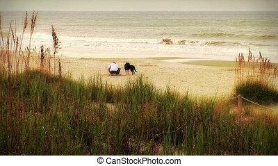 gyöngyhalász, (1004), tengerpart, kutyák