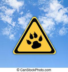gyönyörű, ég, aláír, háttér., állat, lábnyom, út