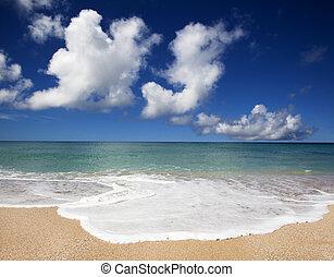 gyönyörű, ég, világos, tengerpart