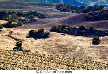 gyönyörű, andalucia