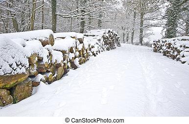 gyönyörű, elvág, kazalba rakott, tél, hó, mély, színhely, szűz, erdő, friss, út, szegély, faanyag