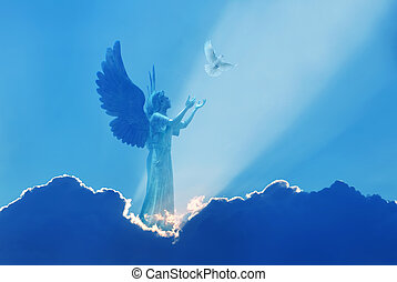 gyönyörű, fény, ég, isteni, nap, angyal, küllők