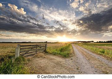 gyönyörű, farmland, napnyugta, holland