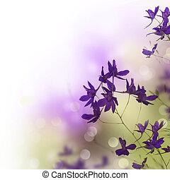 gyönyörű, floral határ