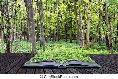 gyönyörű, fogalom, eredet, apródok, kreatív, növekedés, zöld erdő, vibráló, könyv, táj
