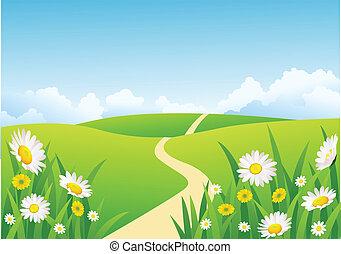 gyönyörű, háttér, természet