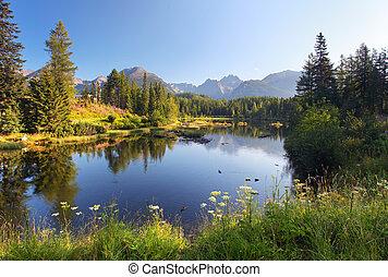 gyönyörű, hegy, természet, pleso, -, színhely, tó, slovakia, tatra, strbske
