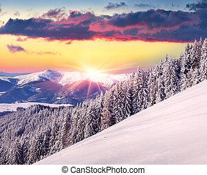gyönyörű, hegyek, tél, napkelte
