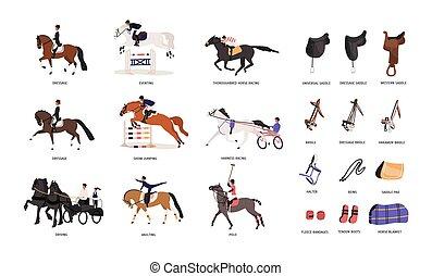 gyönyörű, lakás, ló, vagy, színes, style., elszigetelt, versenyképes, lóháton, háttér., sport., vektor, különféle, ábra, gaits, gyűjtés, lovaglás, fehér, eszközök, equestrianism, karikatúra