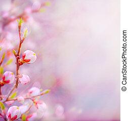 gyönyörű, művészet, eredet, virágzás, fa, háttér, ég