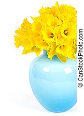 gyönyörű, nárciszok, váza