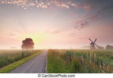 gyönyörű, nyár, farmland, napkelte, holland