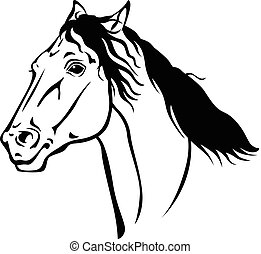 gyönyörű, portré, ló