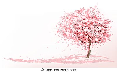 gyönyörű, rózsaszínű, vector., fa., sakura, háttér, virágzó