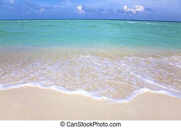 gyönyörű, tengerpart, felhő