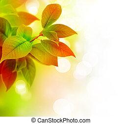 gyönyörű, zöld