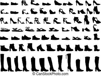 gyűjtés, nagy, women's, shoes., elegáns