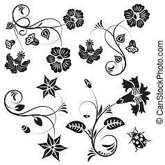 gyűjt, virág, határ