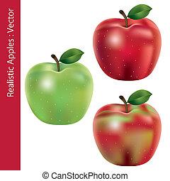 gyakorlatias, állhatatos, alma