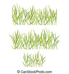 gyakorlatias, fű, zöld