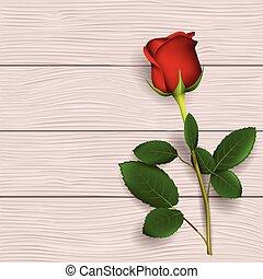 gyakorlatias, piros rózsa