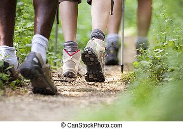 gyalogló, cipők, emberek, erdő, utazás, evez