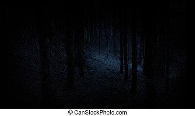 gyalogló, erdő, át, hátborzongató
