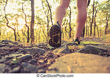 gyalogló, erdő, gyakorlás, futás, kaland, combok, vagy