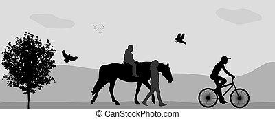 gyalogló, illustration., emberek, liget, ló, bicycle., vektor