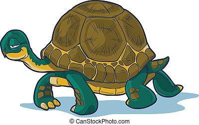 gyalogló, karikatúra, teknősbéka