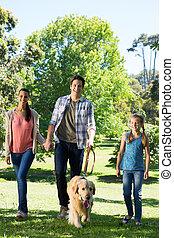 gyalogló, liget, -eik, család hím, boldog