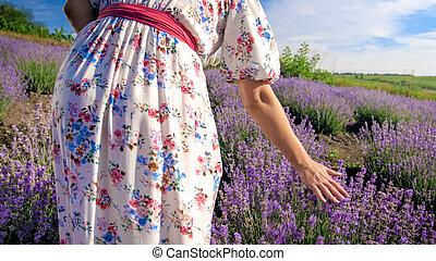 gyalogló, nő, kép, levendula, fiatal, mező, hátsó kilátás
