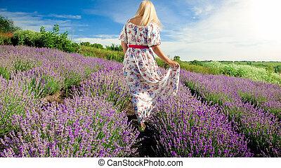 gyalogló, nő, kép, levendula, fiatal, mező, szőke, hátsó kilátás
