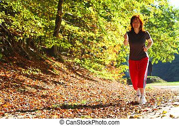 gyalogló, nő, ország, kereszt, ősz, nyom, erdő