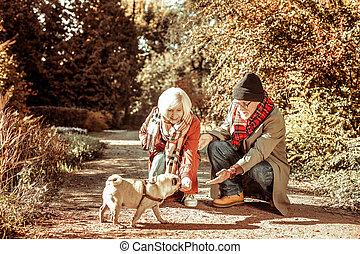 gyalogló, párosít, kutya, -eik, együtt., idősebb ember, boldog