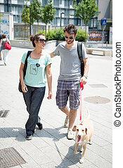 gyalogló, utca, párosít, kutya