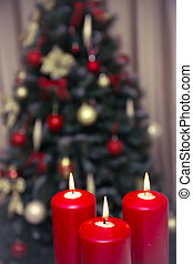 gyertya, díszes, fa, három, karácsony