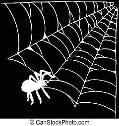 háló, pók, ábra