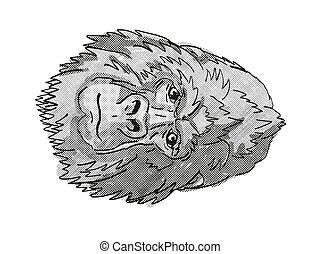 hát, retro, vagy, rajz, gorilla, ezüst, hegy, karikatúra