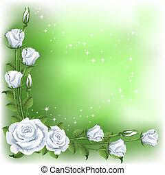 háttér, agancsrózsák