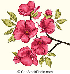háttér., cseresznye, blossom., p, flowers., sakura, elágazik, virágos
