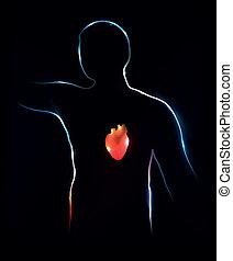 háttér., elvont, heart., orvosi ábra