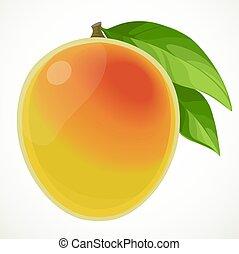 háttér, fehér, mangó, elszigetelt